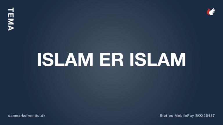 Tema Islam - Danmarks Fremtid